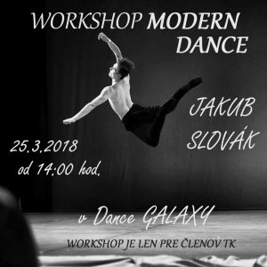 jakub-slovak-workshop